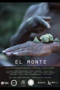 Women in Film (Cuba) Poster