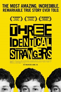 Three Identical Strangers Poster
