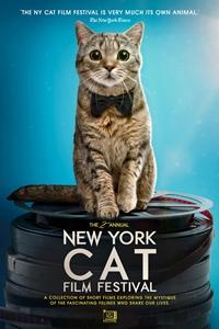 2019 NY Cat Film Festival Poster