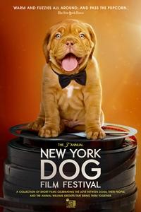 2019 NY Dog Film Festival Poster