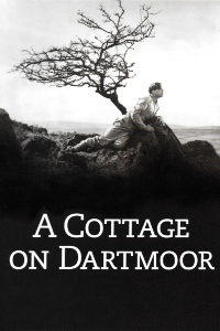 A Cottage on Dartmoor Logo
